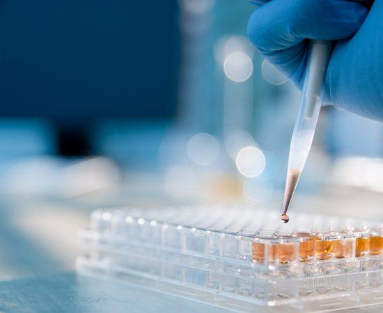 ampath-laboratories